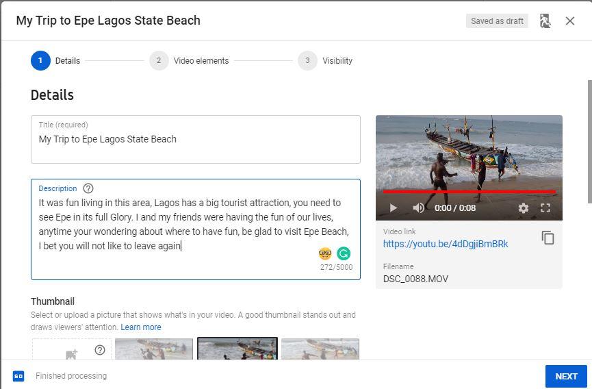 Publisg your video